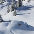 Last friday and saturday we received about 30-40cm of powder on the good side of the Arlberg. We have been riding and splitboarding with the Steinbocks up the Maroy into...